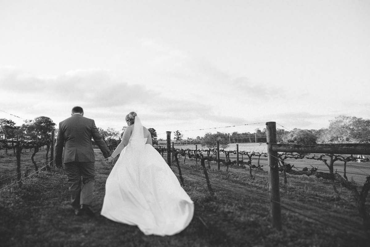 Gavin James Photography, Albert River Winery Wedding Photography